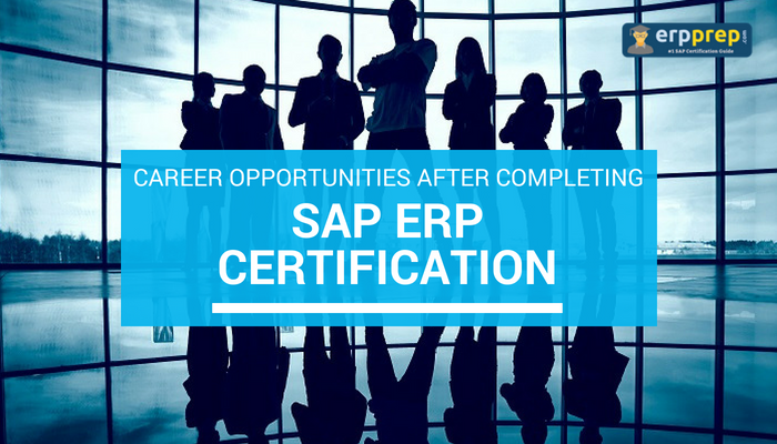 SAP ERP Certification, Career Opportunities after Getting SAP ERP, Financial Accounting (FI), Managerial Accounting (CO), Materials Management (MM), Sales and Distribution (SD), Production Planning (PP), Project System (PS), Human Capital Management (HCM), Quality Management (QM)